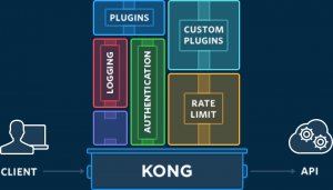 Ingress Controller:Kong