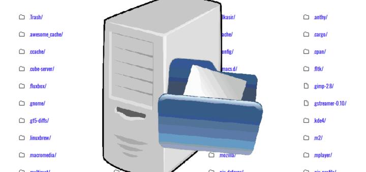 设置一个静态文件服务